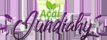 Açaí Jundiahy Logotipo